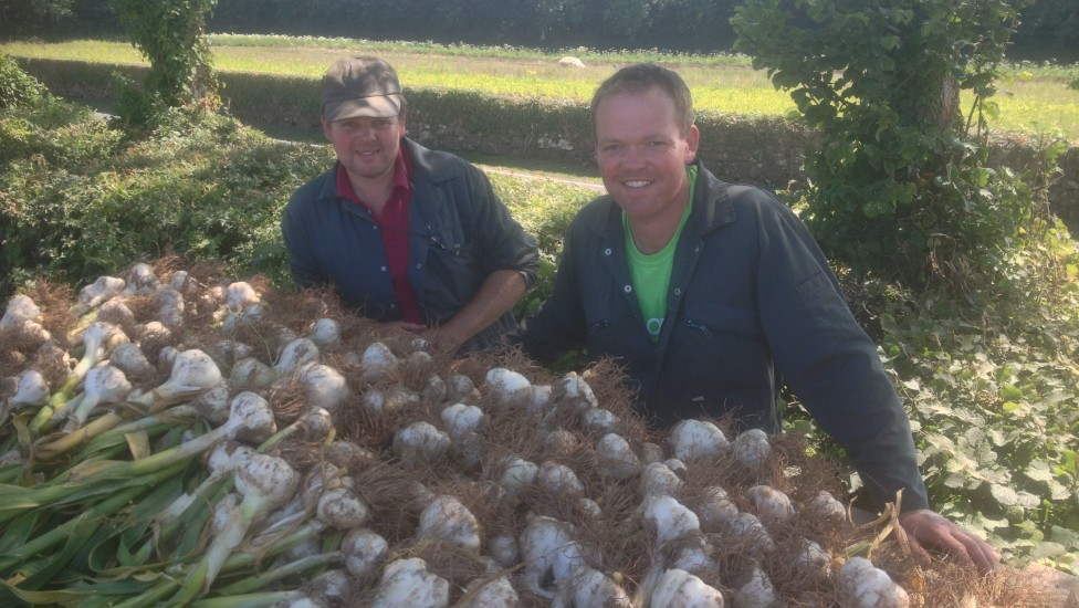 Anglesey Garlic and Go Garlic
