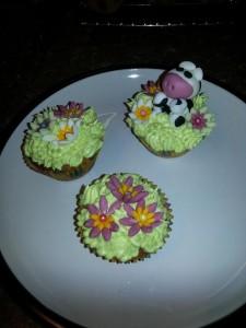 Anglesey Celebration Cakes